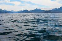 Choppy Alaska Water