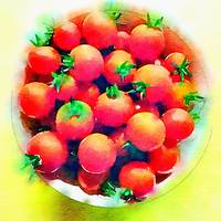 Tomatoes in a Bowl