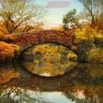 """""""Gapstow Foliage"""" by JessicaJenney"""