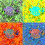 """A Sequence of Toddler Turtles - Green & More"" by Saturato"