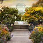 """Greenhouse Garden"" by JessicaJenney"