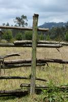 Wood Rail Fence in a Pasture