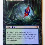 """Misty Rainforest- Spiderman"" by jenndelfs"