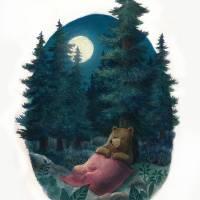 SleepingBearWeb Art Prints & Posters by Joe Hoksbergen