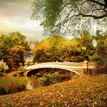 """Autumn Arrives at Bow Bridge"" by JessicaJenney"