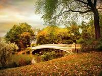 Autumn Arrives at Bow Bridge