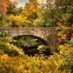 """Stone Bridge"" by JessicaJenney"