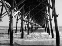 Under the Folly Pier
