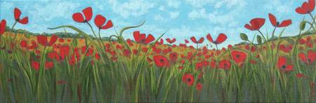 I Dreamed of Poppies