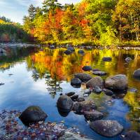 Colorful Trees Along the Swift River Art Prints & Posters by George Oze
