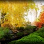 """""""garden bridge glow"""" by lizmix"""