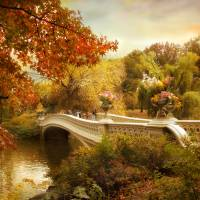 Autumn comes to Bow Bridge Art Prints & Posters by Jessica Jenney