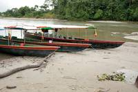 Boats on the Napo River