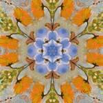 """Mandala Thirteen"" by RuthPalmer"