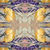 Mandala Seventeen Art Prints & Posters by RUTH PALMER