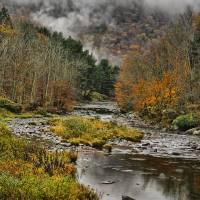 Mountain Colors and Fog Art Prints & Posters by Deborah Benoit