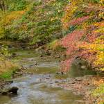 """""""Early Fall in West Virginia"""" by FranklinThompson"""