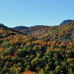 """Fall Foliage along the Blue Ridge Parkway, Great S"" by smayer"