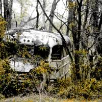 Abandoned Bus Art Prints & Posters by Jeannette Wood