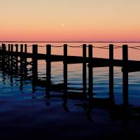 obx Art Prints & Posters by Valerie Morrison