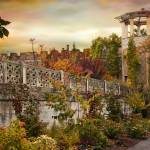 """Walled Garden in Autumn"" by JessicaJenney"