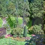 """""""Butchart Gardens 15, 1993"""" by PriscillaTurner"""