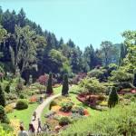 """""""Butchart Gardens 11, 1993"""" by PriscillaTurner"""