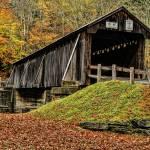 """""""Autumn in Full Gloryc"""" by DBenoit"""