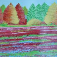 cranberrybog Art Prints & Posters by Alina Deutsch