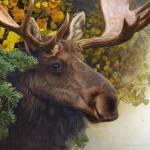 """forest garland bull moose in autumn"" by rchristophervest"