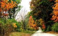 Autumn on the Dirt Roads