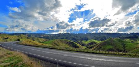 Rollings Hills of New Zealand