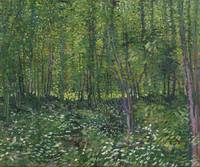 Vincent van Gogh, Trees and undergrowth