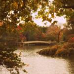 """Autumn Crescendo at Bow Bridge"" by JessicaJenney"