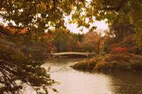 Autumn Crescendo at Bow Bridge