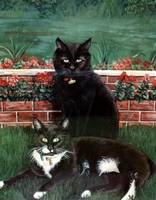 Copy (2) of Copy of winnie_and_winston_Kays_cats