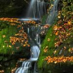 """Round Pond Falls"" by DBenoit"