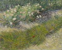 Vincent van Gogh, Grass and butterflies