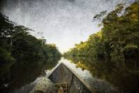 Dugout Canoe, Amazon Rainforest, Ecuador