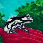 """black and white frog"" by Artpixie"