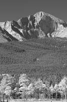 Longs Peak Autumn View in Black and White