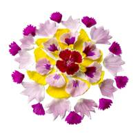 Mandala Blessing of the Pansy and Dianthus