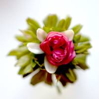 Flower Blessing from Green Rose, Lemon, Red Rose