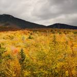"""Rustic Autumn At Franconia Notch"" by LukeMoore"