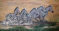 Galloping Zebras