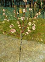 Vincent van Gogh, Almond tree in blossom