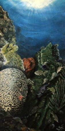 Brain Coral in The Caribbean Sea.
