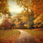 """Autumn in Peak"" by JessicaJenney"