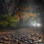 """""""Peaceful Stroll"""" by zenin"""