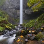 """Latourell Falls Autumn"" by Dawsonimages"